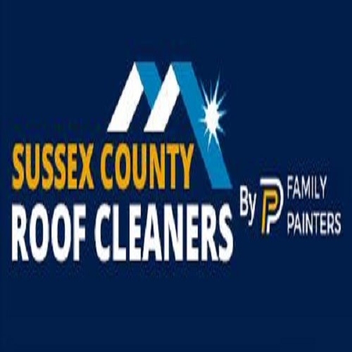 Sussex County Roof Cleaning And Pressure Washing